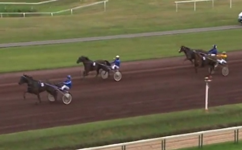Le point sur le Grand National du Trot